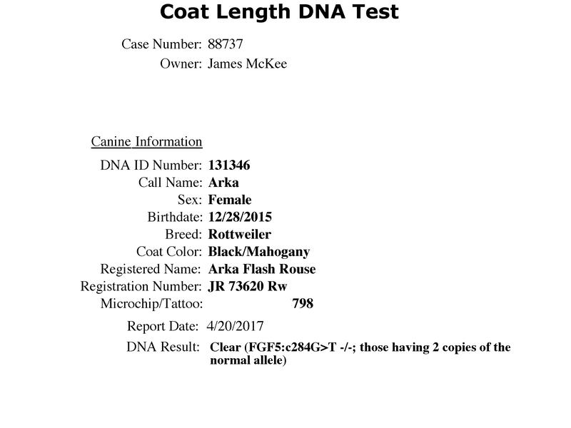 Arka Flash Rouse Coat-Length