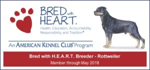 AKC Bred with H.E.A.R.T.