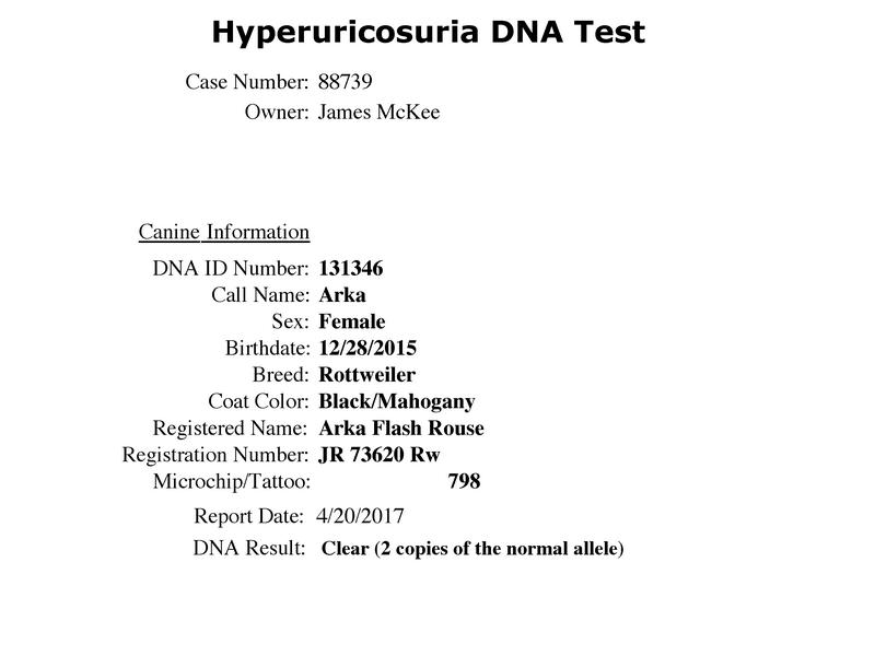 Arka Flash Rouse Hyperuricosuria-DNA